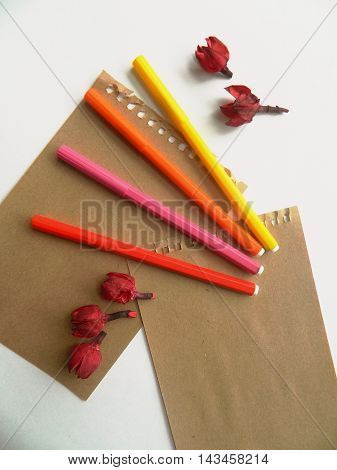 Copyspace blank sheets of craft paper covered with multiple colorful felt pen markers and dried flowers