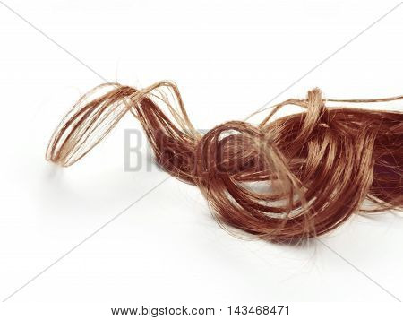 Curly brown hair, isolated on white background.