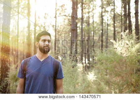 Serious Young Man In A Pine Forest