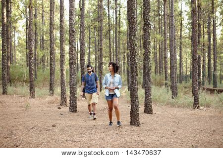 Young couple wandering in the pine tree forest in the late afternoon sunshine while wearing casual clothing