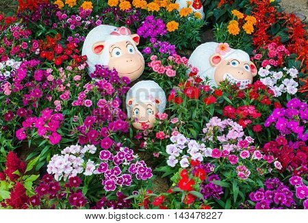 Dolly the sheep in flower natural garden .