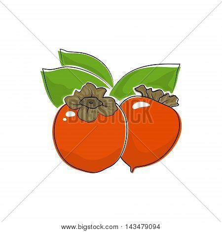 Orange Persimmon Isolated on White, Tropical Fruit Persimmon, Vector Illustration
