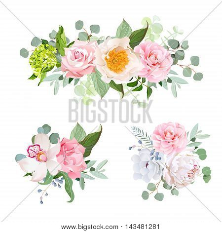 Stylish various flowers bouquets vector design set. Green hydrangea rose camellia orchid peony anemone carnation eucaliptus leaf wildflowers. All elements are isolated and editable.