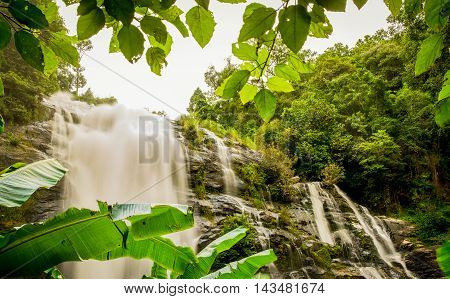 Waterfall lies in misty tropical rain forest