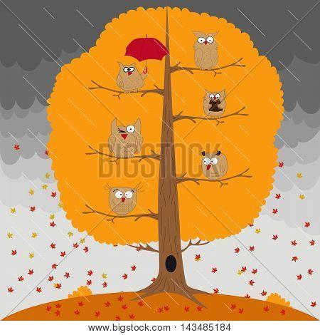 Owl, tree, rain, autumn. Autumnal set of vector elements
