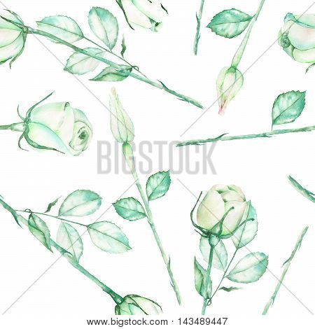A seamless pattern with the watercolor beautiful tender green roses on a white background