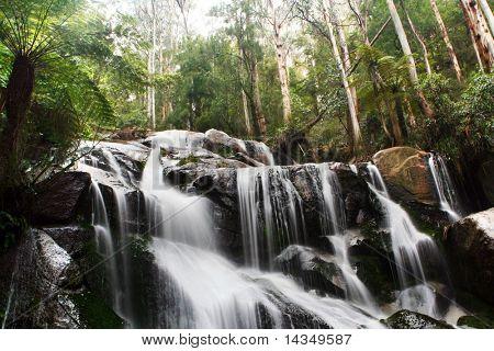 Waterfall - Toorongo Falls, Victoria, Australia