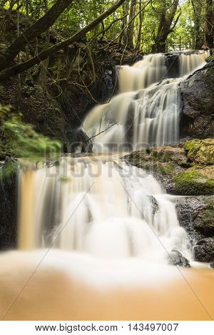 Karura Forest Waterfall In Nairobi, Kenya