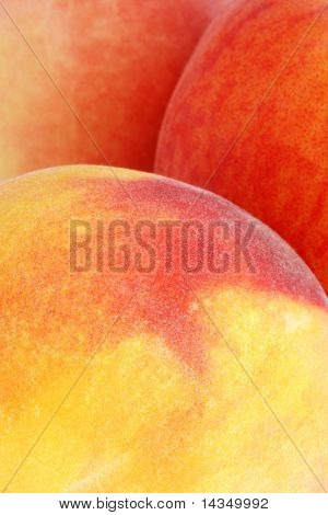 Full-frame closeup of three luscious peaches.
