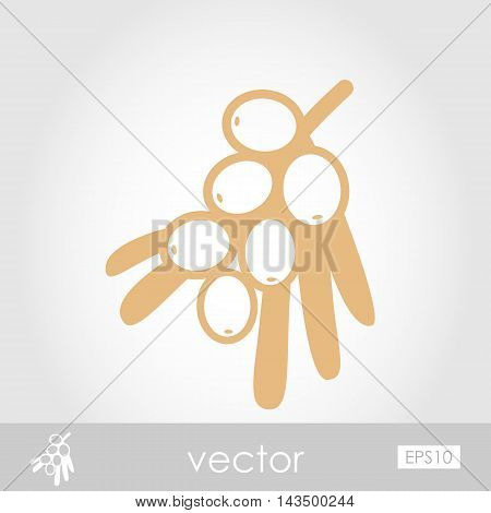 Branch of sea buckthorn berries outline icon. Berry fruit. Vector illustration eps 10