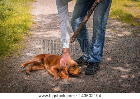 Man Holds A Stick In Hand And He Wants To Hit The Dog