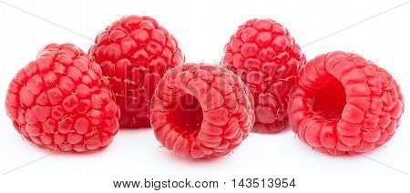 Five ripe raspberries in a line isolated on white background with clipping path