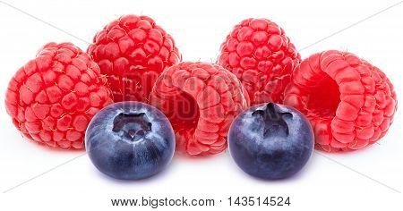 Five ripe raspberries in a line with two blueberries isolated on white background with clipping path