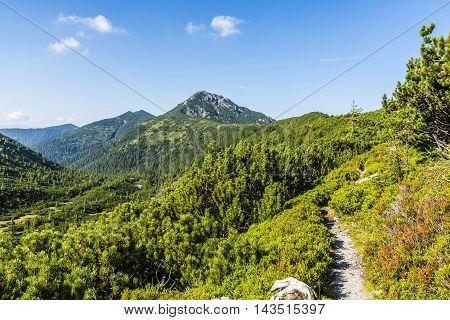 Path overlooking the beautiful summer mountain landscape.