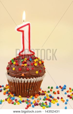 Frosted chocolate cupcake with a numeral one candle.  Surrounded by colourful sprinkles.