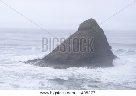Island On The Oregon Coast.