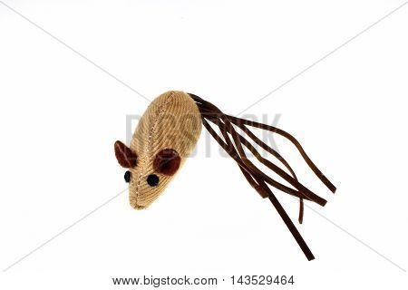 Toy Fun Mouse Isolated