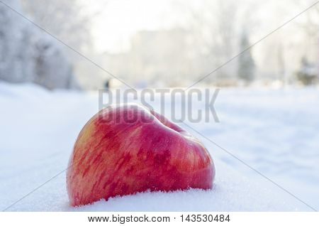 red apple on white and air snow in cold weather