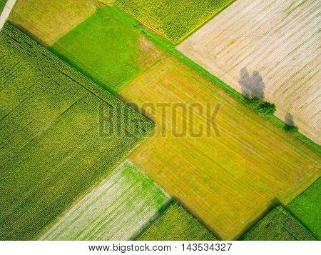 Aerial view of a field. Autumn season.