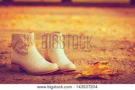 Shoes standing on leaves. Footwear on maple leaf. Nature vegetation park fashion concept.