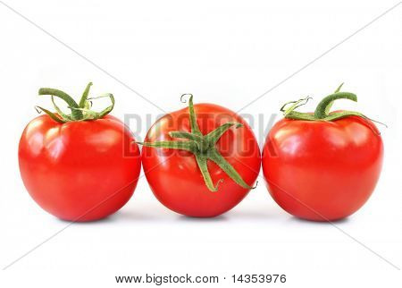 Three vine ripened truss tomatoes, isolated on white.  Natural light.
