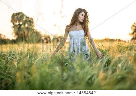Young girl stands in the rye field and looks to the left on the sunset background. Woman touches the rye. She wears a light dress with prints of flowers. Outdoors. Horizontal.