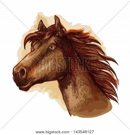 Brown mare horse head icon with bay racehorse. Equestrian sporting symbol, horse racing and t-shirt print design