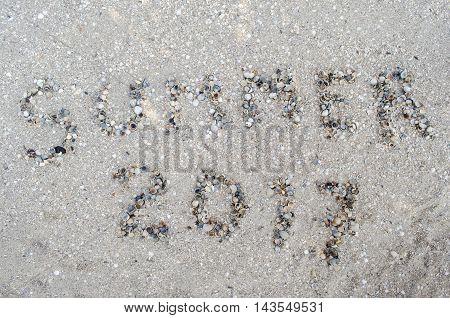 inscription summer from cockleshells on the beach near the sea