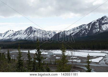 View of the Teklanika River in Denali National Park