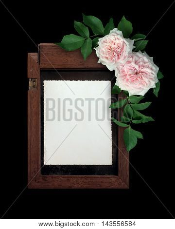 Blank photo frame and white roses over black background