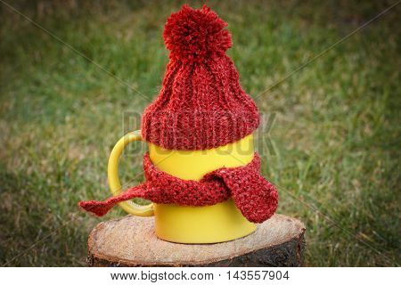 Cup Of Beverage With Woolen Cap Wrapped Scarf On Wooden Stump