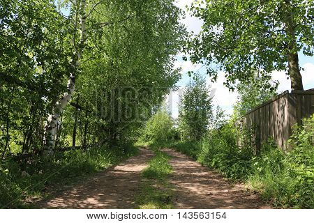 Street of a village in a nice summer day