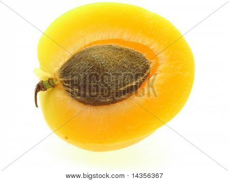 lobule of sweet apricot with stone on white background