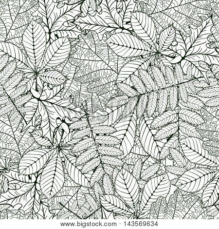 seamless pattern made Isolated skeletal oak chestnut rowan maple leafs with veins. vector illustration