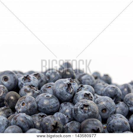 Heap of fresh blueberry berries isolated on white background