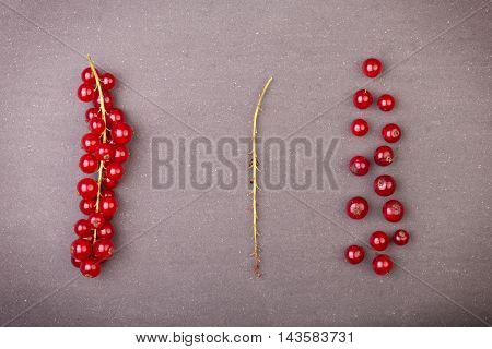 Detail Bunch Of Red Currants With A Stem