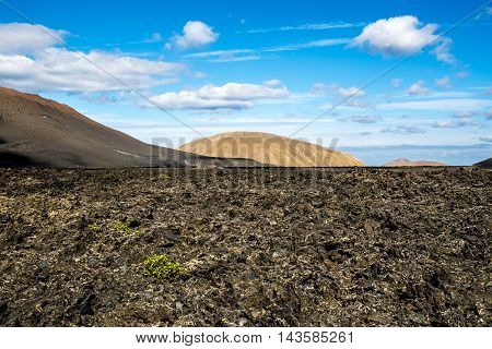 Timanfaya Volcanic Area In Lanzarote,