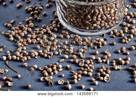 Spicy jar of dried coriander seeds Coriandrum sativum. Stone background with seeds spread near jar.