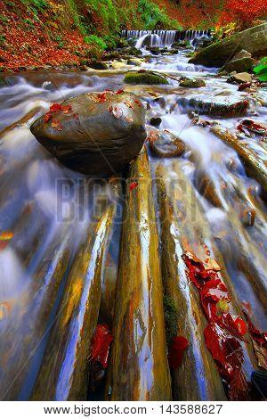 rapid mountain river in autumn. Fallen leaves