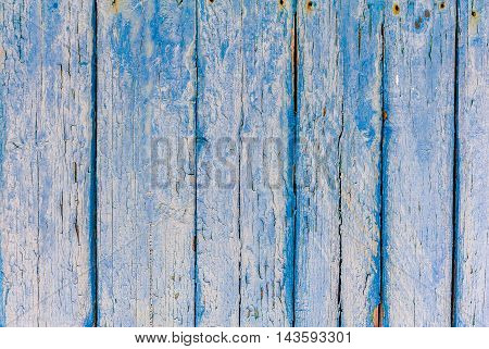 Texture of wood blue old panel - background