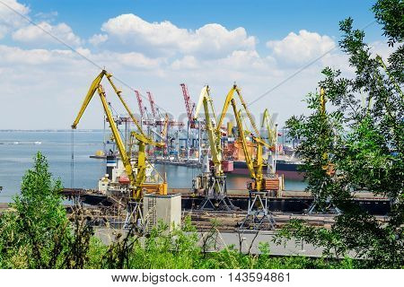 Cranes and other constructions in the international sea port
