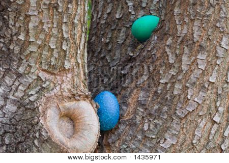Blue And Green Easter Eggs In Tree