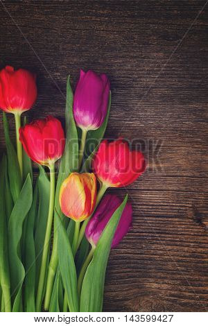 bunch of fresh purple and red tulips on wooden background, retro toned