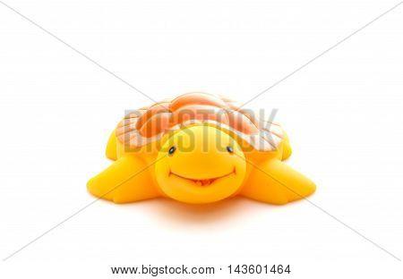 Bath Toy Turtle On White Background