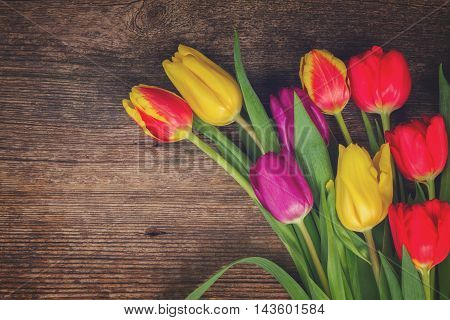 bunch of fresh purple, yellow and red tulip flowers close up on wooden background, retro toned