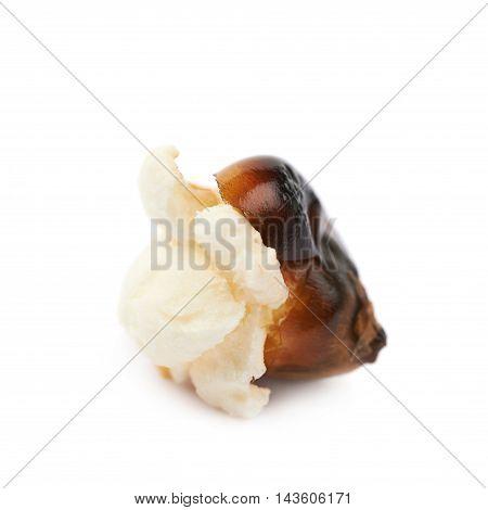 Semi-opened popcorn kernel isolated over the white background