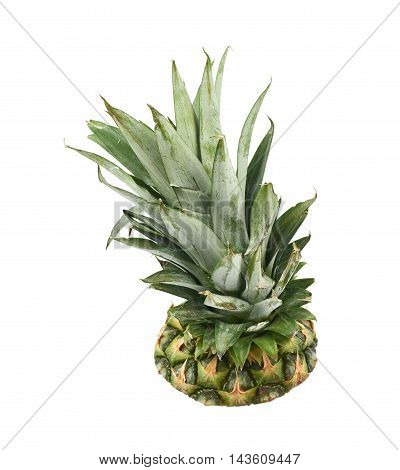 Upper half of a pineapple fruit isolated over the white background