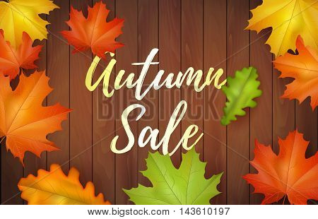Autumn sale banner with falling leaves and wooden background. Web banner or poster for e-commerce, on-line cosmetics shop, fashion & shop, store. Vector illustration. EPS 10