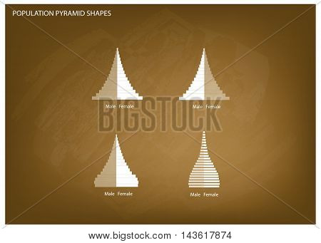 Population and Demography Illustration of 4 Types of Population Pyramids Chart or Age Structure Graph on Chalkboard Background.