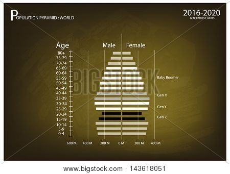 Population and Demography Illustration of Population Pyramids Chart or Age Structure Graph with Baby Boomers Generation Gen X Gen Y and Gen Z in 2016 to 2020.